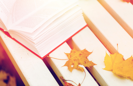 season, education and literature concept - open book and autumn leaves on park bench