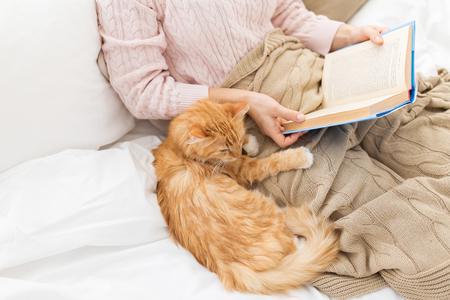 rode kat en vrouwelijke eigenaar leesboek thuis Stockfoto