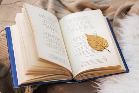 literature, reading and poetry concept - book with autumn leaf on blanket at home