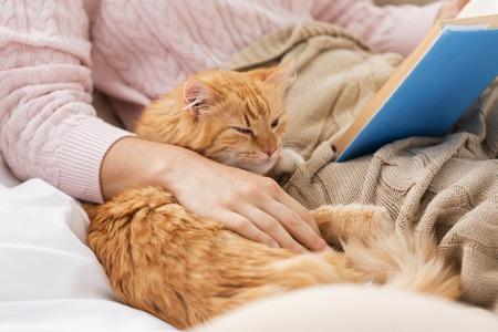 czerwony kot i właścicielka czytająca książkę w domu