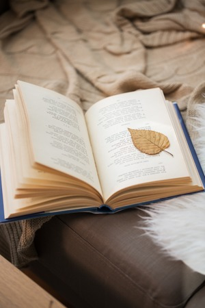 book with autumn leaf on page on sofa at home Foto de archivo