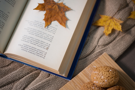 book with autumn leaf and cookies on home blanket Standard-Bild
