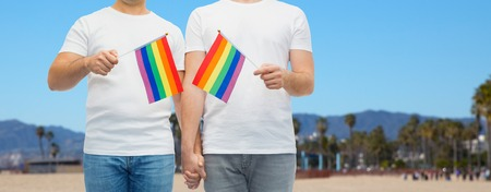 male couple with pride flags holding hands