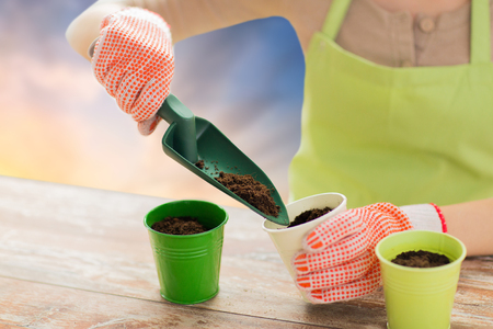 gardening, planting and people concept - close up of woman hands with trowel adding soil to flower pot over sky background Stock Photo