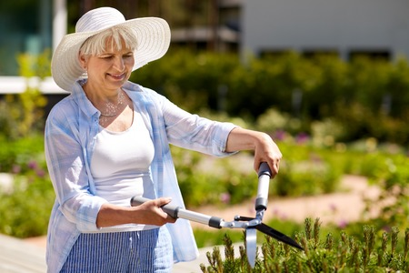 senior gardener with hedge trimmer at garden Stock Photo - 104173765