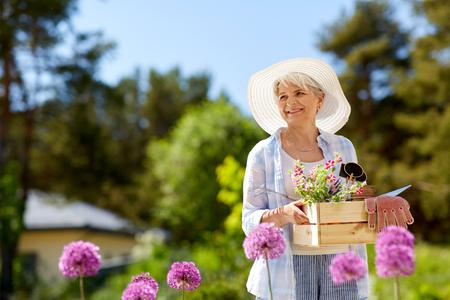 Gartengeräte und Blumen der älteren Frau im Sommer