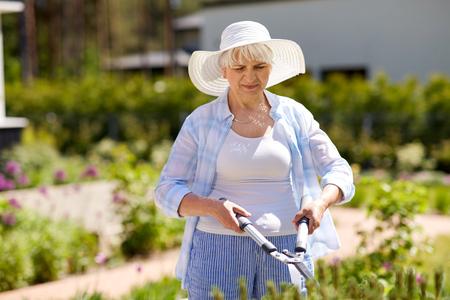 senior gardener with hedge trimmer at garden