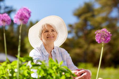 senior woman with allium flowers at summer garden Stock Photo