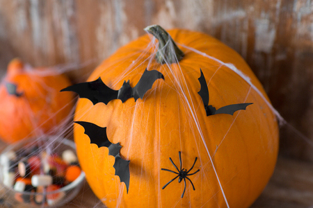 halloween pumpkins with bats and spider web