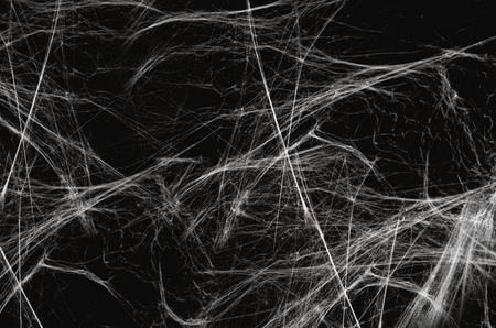 Halloween-Dekoration des Spinnennetzes über Schwarz Standard-Bild