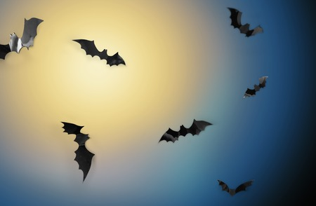 bats flying over moonlight in night sky background