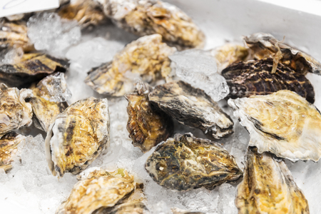 close up of chilled oysters on ice at fish market Stock Photo