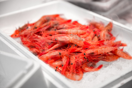 fresh shrimps or seafood on ice at street market 写真素材