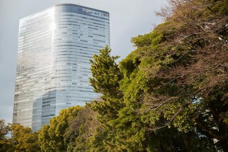 hamarikyu gardens park in tokyo, japan