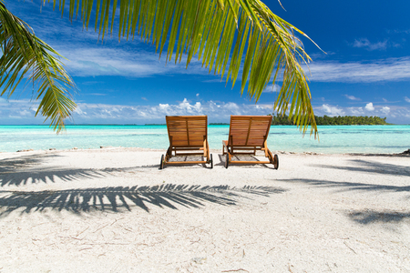 tropical beach with palm tree and sunbeds Stock Photo