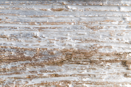 Baumrinde oder Holzoberflächenhintergrund Standard-Bild
