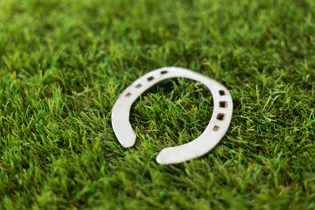horseshoe on artificial grass