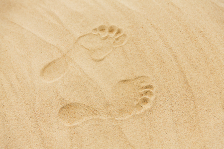 footprints in sand on summer beach