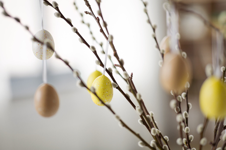 close up of pussy willow decorated by easter eggs