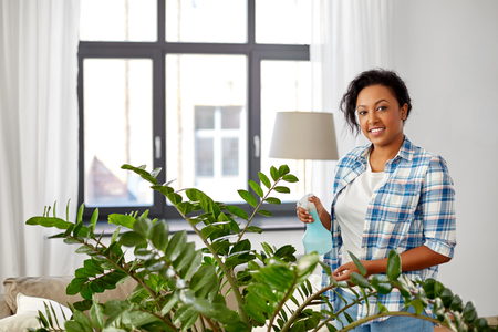 happy woman spraying houseplant with water at home