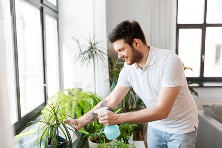 man spraying houseplants with water at home