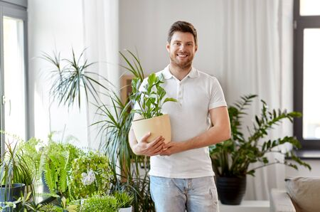 people, nature and plants concept - smiling man holding flower in pot and taking care of houseplants at home Stockfoto