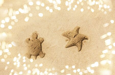 sand shapes of turtle and starfish on summer beach Banco de Imagens