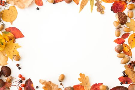 Autumn leaves, chestnuts, acorns and berries frame Foto de archivo - 125188658