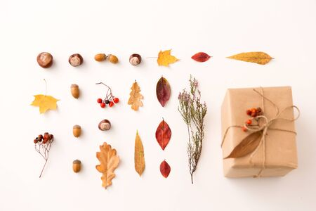 Gift, autumn leaves, acorns and rowanberry