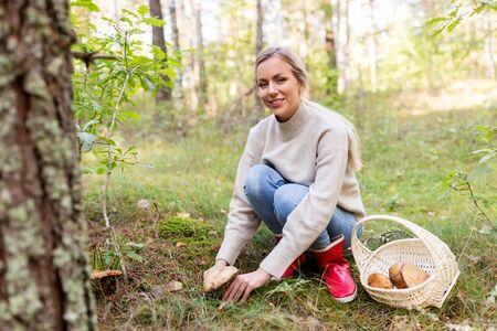 giovane donna che raccoglie funghi nella foresta autunnale