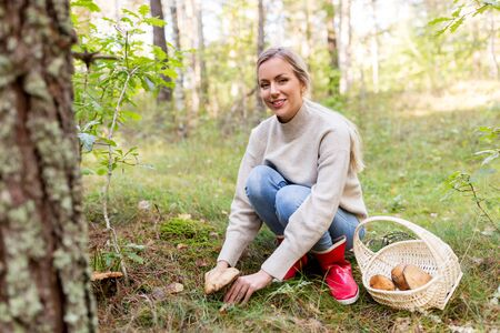 young woman picking mushrooms in autumn forest Фото со стока