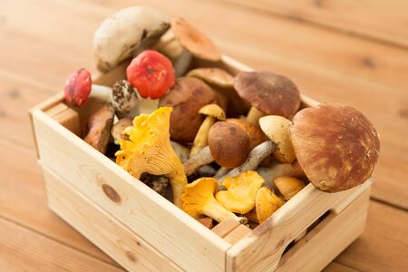 wooden box of different edible mushrooms