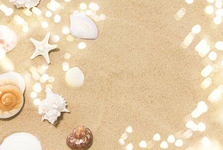 seashells on beach sand Reklamní fotografie - 125559468