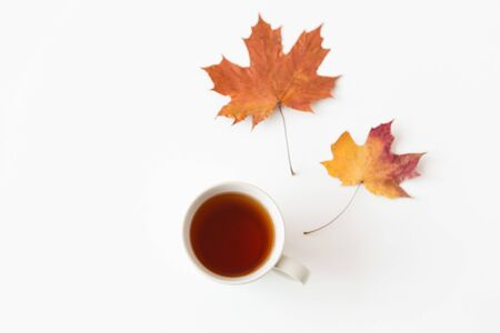Drinks, season and people concept - cup of black tea and autumn maple leaves on white background
