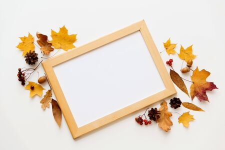 Nature, season and botany concept - autumn fruits and whiteboard in wooden frame on white background