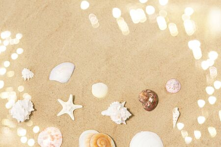 Seashells on beach sand Reklamní fotografie - 126006066