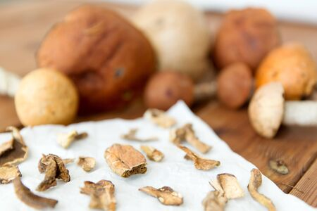 Dried mushrooms on baking paper Stock Photo