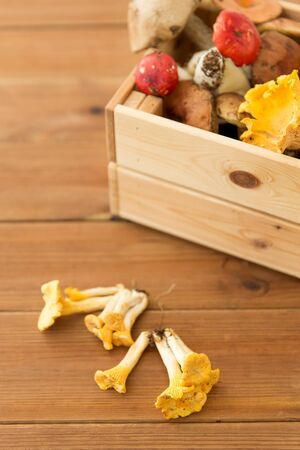 Wooden box of different edible mushrooms Stock Photo - 126006202