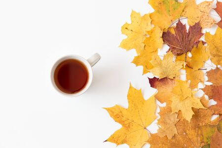 Cup of black tea and autumn maple leaves