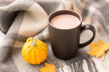 Hot chocolate, autumn leaves and warm blanket 스톡 콘텐츠