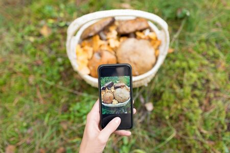 Close up of woman photographing mushrooms