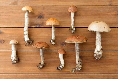 Brown cap boletus mushrooms on wooden background Stock Photo