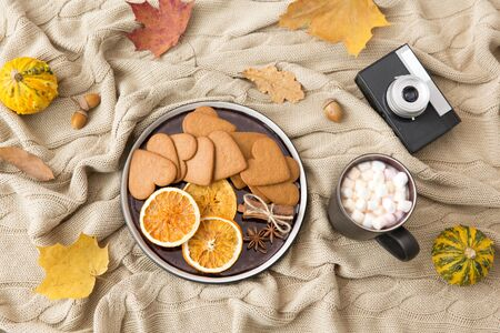 Gingerbread, hot chocolate and camera in autumn