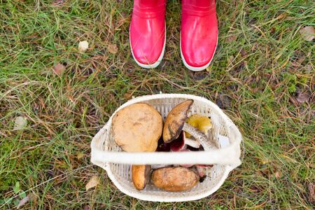 Basket of mushrooms and feet in gumboots in forest Stock fotó