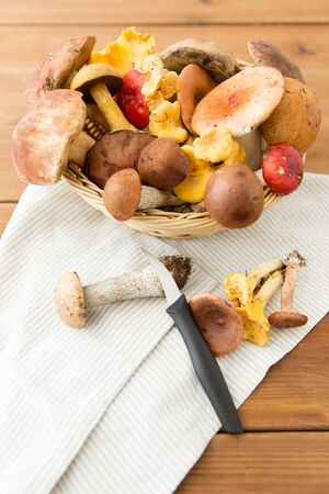 basket of different edible mushrooms and knife