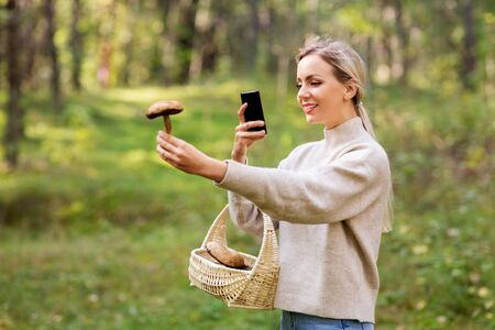 woman using smartphone to identify mushroom
