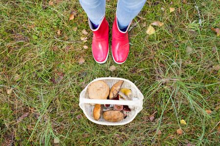 basket of mushrooms and feet in gumboots in forest