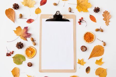 autumn fruits and clipboard with blank white paper 写真素材