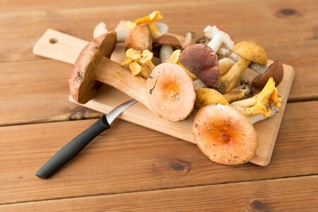 cooking, culinary and edible mushrooms concept - different edible mushrooms and kitchen knife on wooden cutting board 版權商用圖片 - 126312817