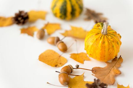 close up of pumpkin, acorns and autumn leaves